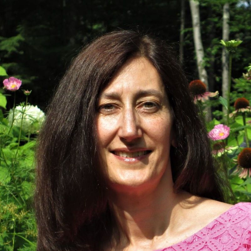 Sarah C. Benoit, LCMHC, LMHC, PLLC is a practitioner on Psychedelic.Support